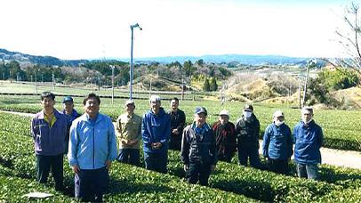 下倉沢茶農協